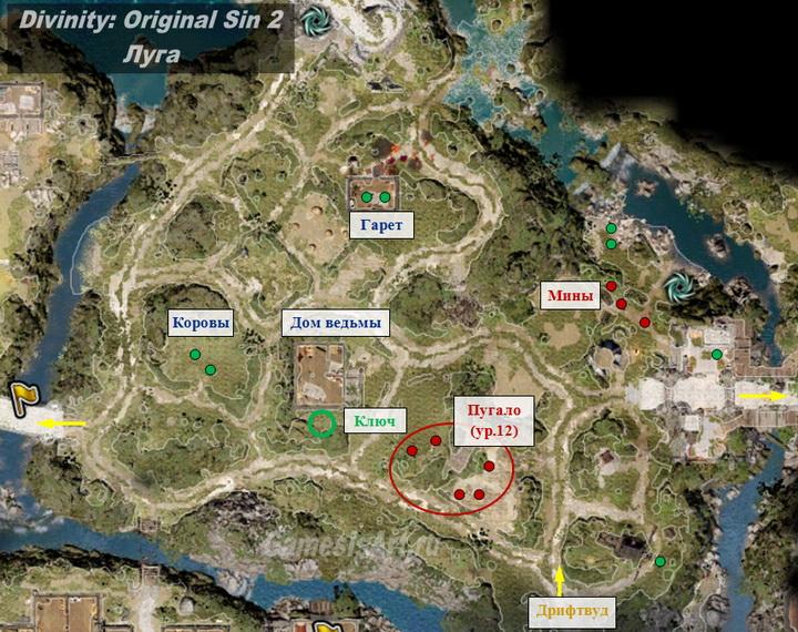 Divinity Original Sin 2. Карта: Луга