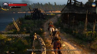 Witcher 3: Wild Hunt. Сирень и крыжовник