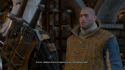 Witcher 3: Wild Hunt. Сокровища графа Ройвена