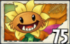 Primal Sunflower
