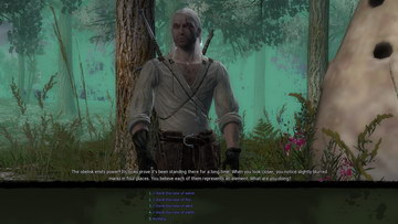 Witcher 1. Damn Those Swamps