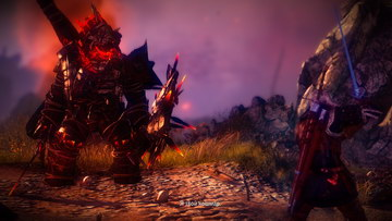 Witcher 2. Драуг