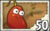 Chili Bean